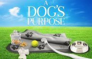 Win some 'A Dog's Purpose' goodies!