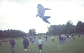 Having a whale of a time at Basingstoke Kite Festival