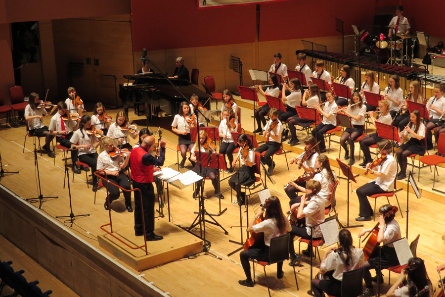 Young musicians needed for youth orchestra