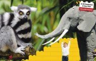 Win a family ticket to Marwell Zoo
