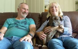 Max the one-eyed dog finds a happy home in Basingstoke