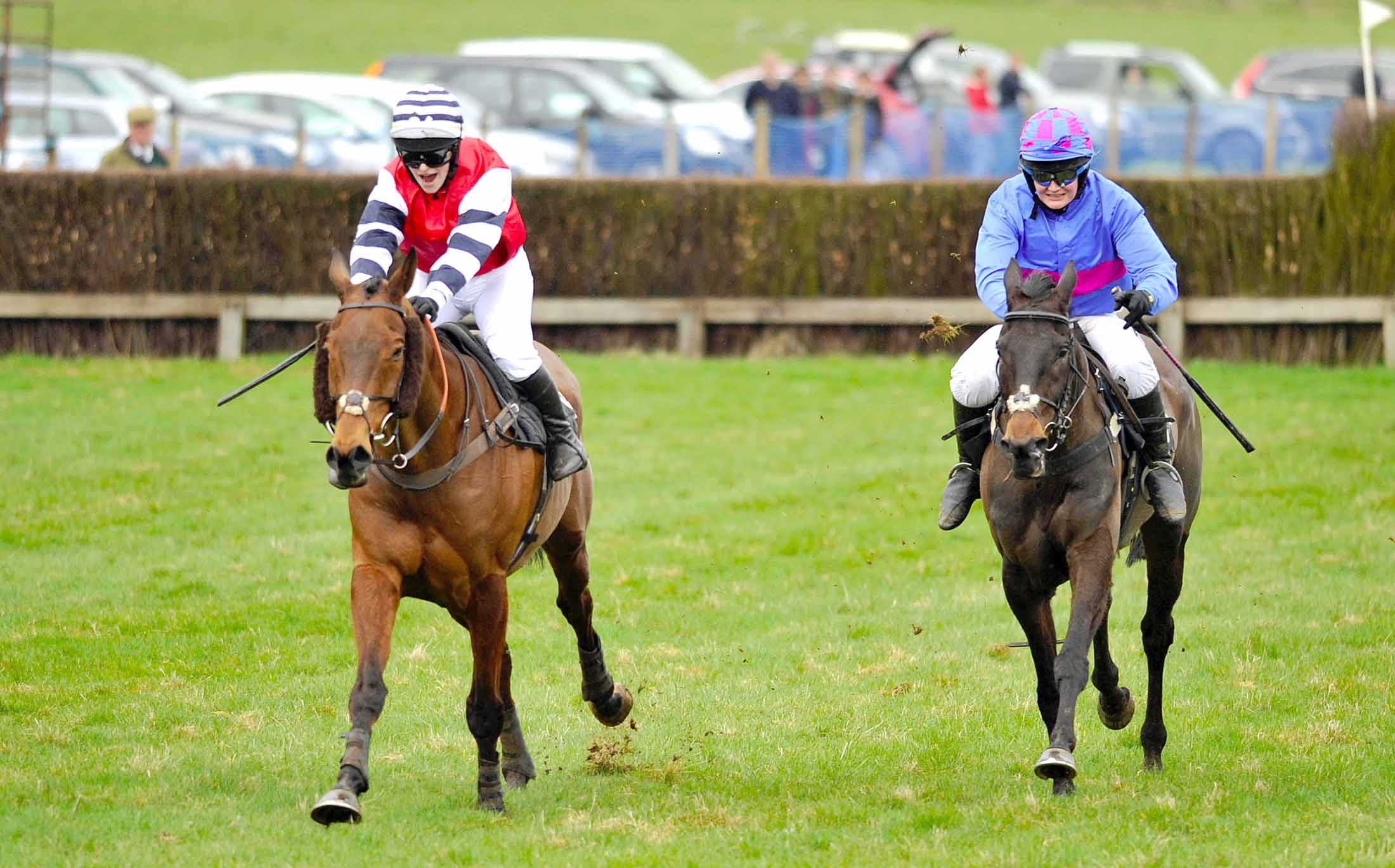 Point to Point returns bringing racing and fun for everyone