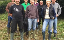 Working to Conserve Great Crested Newts